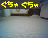 n336.jpg